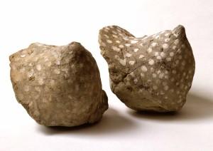 zwei aus Lehm geformte Brüste, mit weissen Punkten verziert, aus dem Busenhaus der Ahninnen