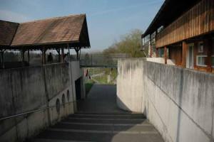 Moderne Mauern veranschaulichen die Lage des spätrömischen Kastells in Pfyn