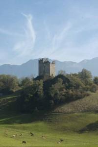 Die Burgruine Wartau im St. Galler Rheintal erhebt sich links des Rheins. Im Hintergrund die drei Schwestern genannten Berge in Liechtenstein. Im Vordergrund weiden Kühe.