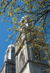 Durch lichtes Blattwerk blicken wir in Zürich auf die Türme des Grossmünsters, die erhaben in den blauen Himmel ragen